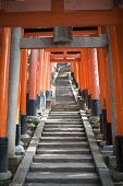stock photo of inari  - Torii gates forming a tunnel over a hillside walkway donated as votive offerings by the locals at the Fushimi Inari - JPG
