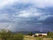 foto of mule  - A Dance of Lightning Strikes in the Mule Mountains - JPG