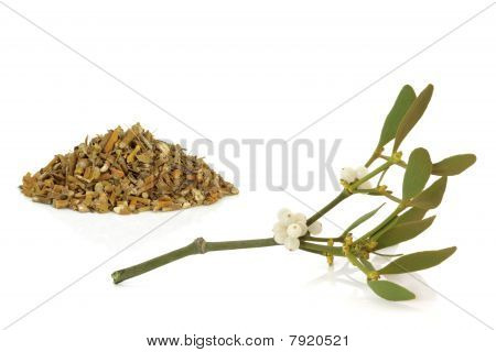 Mistletoe Dried And Leaf Sprig
