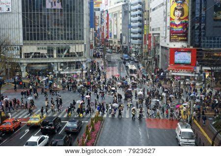 Famous Shibuya crosswalk
