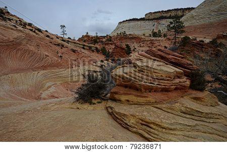 Volcanic Rocks of Zion Park
