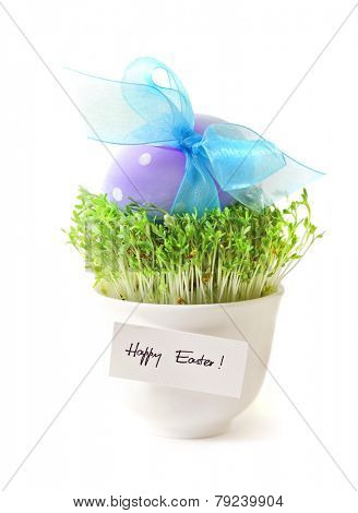 easter egg decoration isolated on white background