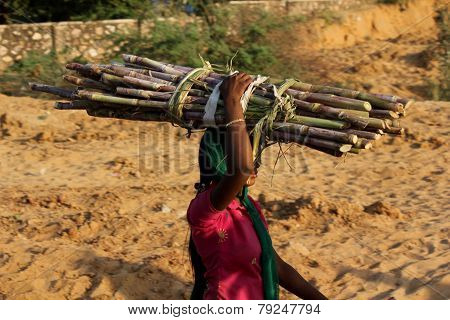Indian woman walking on the street carrying trunk on her head