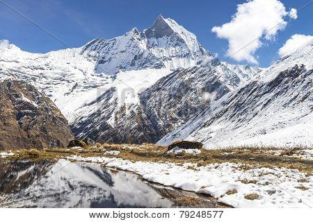 Machhapuchchhre Base Camp Pokhara Nepal / Mount Machhapuchchhre (fish Tail)