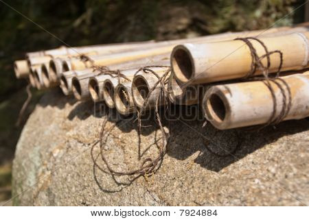 Row Of Natural Bamboo Rods On A Stone Tied Together For Making A Fence