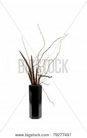 Dry Ikebana