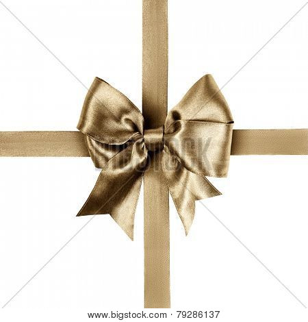 dark brown bow made from silk ribbon isolated