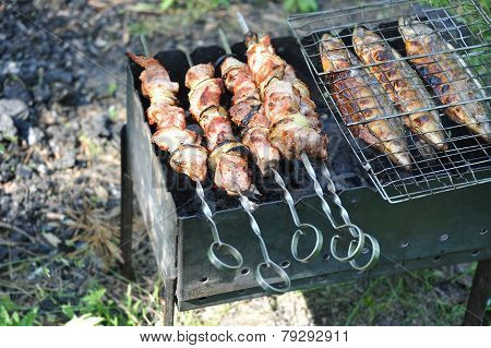 Grilled shish kebab and fish