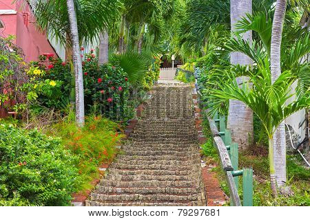 The 99 steps in Charlotte Amalie St Thomas US VI.
