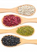picture of kidney beans  - Job - JPG