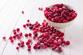 stock photo of frozen  - Frozen cranberry in bowl on white wooden background - JPG