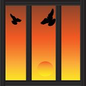 pic of lockups  - Watching A Sunset Through A Barred Window - JPG
