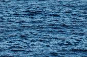 picture of atlantic ocean  - Blue Water Texture Pattern at Noon on the Atlantic Ocean  - JPG