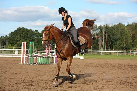 stock photo of bucks  - Brunette woman riding playful bucking chestnut horse - JPG