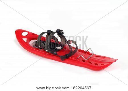 Snowshoe Plastic Color Red