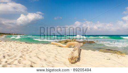 Caribbean Sea In Mexico