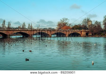 some ducks swim in the Serpentine River, with the Serpentine Bridge in the background, in Hyde Park in London, United Kingdom