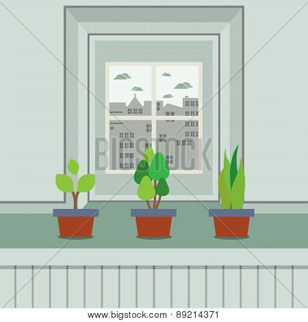 Set Of Pot Plants On Windowsill.