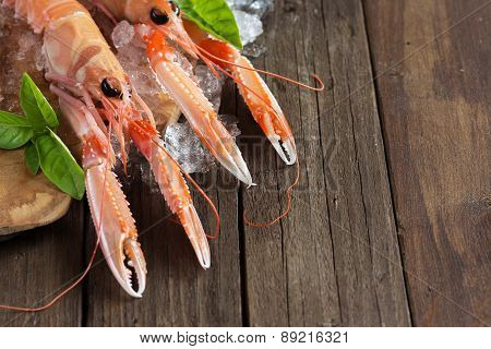 Raw Langoustine On Ice With Basil
