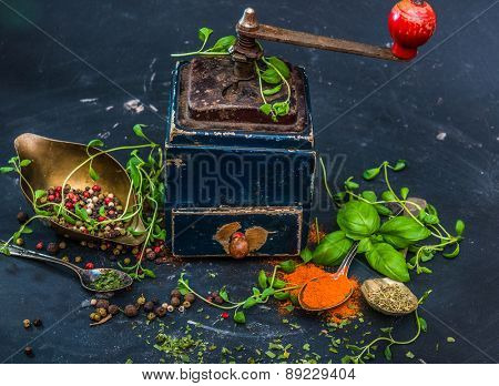 Mill for spices with basilicas and oregano on a dark background
