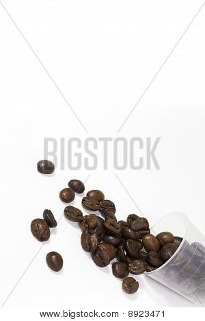 Cupcoffeebeans
