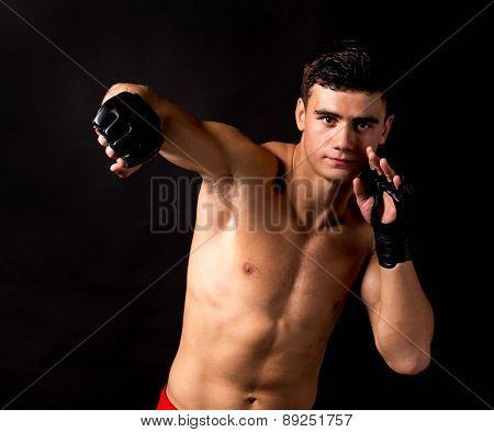 Portrait of boxer posing studio in gloves.