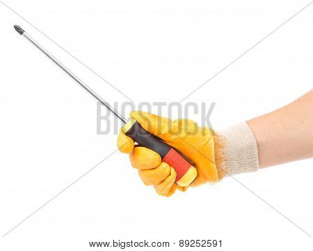 Hand in glove holding screwdriver.