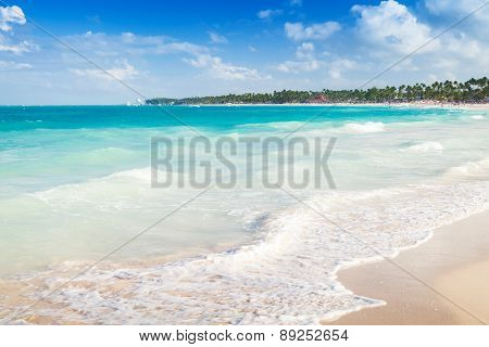 Caribbean Landscape. Coast Of Dominican Republic