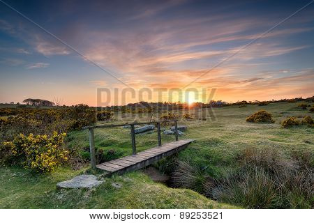 A Wooden Bridge On The Moor