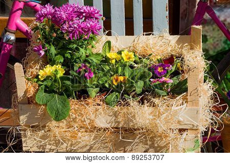 Original Ornamental Decoration Bouquet Of Spring Flowers In A Wooden Box And Iron Bucket And Retro B