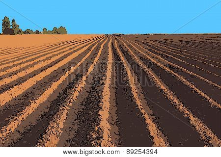 Vector Illustration Plowed Field