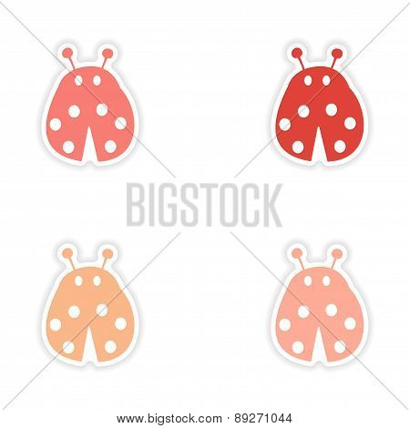 assembly realistic sticker design on paper ladybug