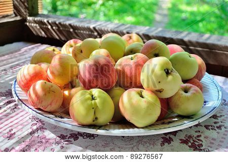 Apples on a plate on a table at village garden.