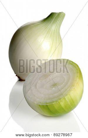 Onion on white backround - close-up