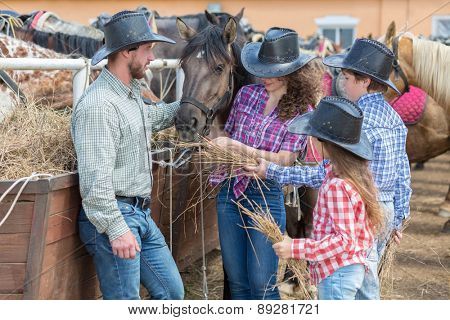 cowboy family of four feed the horses hay