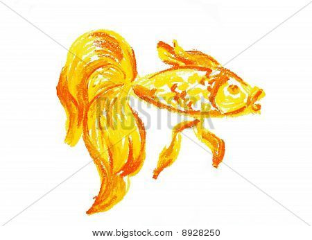 Gold Fish Drawing Isolated
