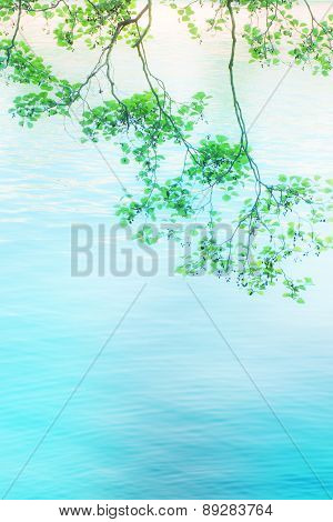 green leaves on water blurred background