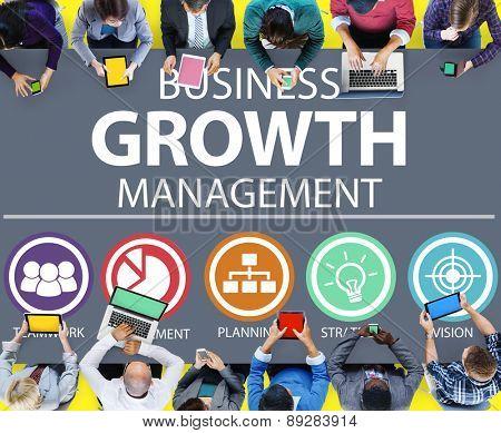 Business Strategy Management Mission Success Concept