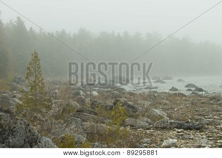 Lake Huron Shore on a Misty Day