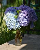 stock photo of hydrangea  - Purple blue and white hydrangeas in clear glass vase sitting a concrete porch with black wrought iron scrolls behind - JPG