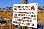 stock photo of dog park  - A sign informing reading dogs and their owners that pets need to be on their leashes at a park  near the base of a mountain - JPG