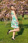 stock photo of orchard  - Beautiful young brunette woman in blooming orchard - JPG