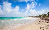 pic of atlantic ocean  - Coastal Caribbean landscape - JPG