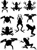 stock photo of foreshortening  - Set of vector silhouette frogs in different foreshortenings and poses - JPG