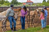 stock photo of foal  - cowboy family of four feeding foals hay - JPG