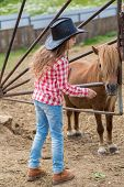 image of foal  - cowboy girl with a pony foal - JPG