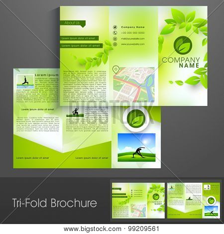 Stylish professional trifold brochure, catalog or flyer template with leaves, yoga girl, boy and map.