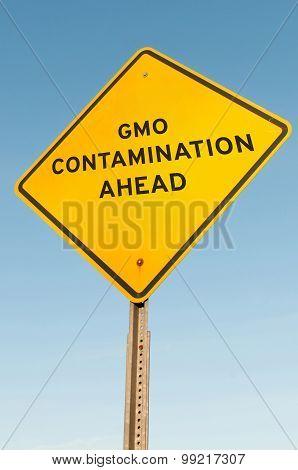 Gmo Contamination