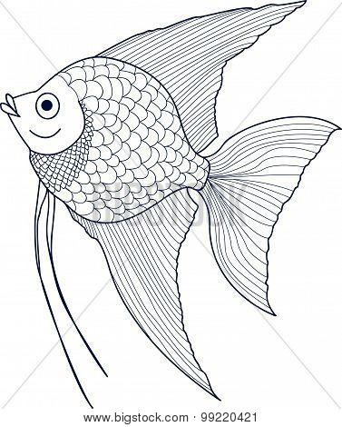 Hand Drawn Scalar Fish