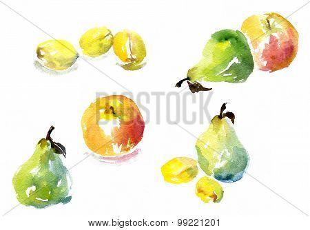 set of watercolor drawing fruits